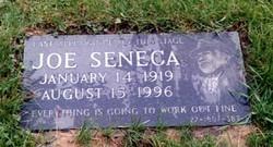 Joe Seneca