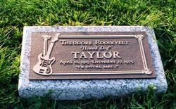Theodore Roosevelt Hound Dog Taylor