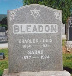 Sarah <i>Attell</i> Bleadon