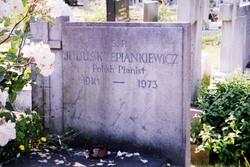 Julius K. Lepiankiewicz