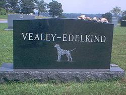 R.J. Vealey