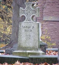 Sarah A Reed