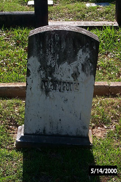 Nannie Henrietta Meek