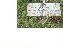 Alfred Bill Wallace
