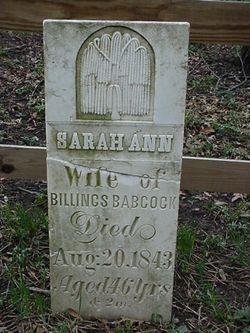 Sarah Ann <i>Sherman</i> Babcock