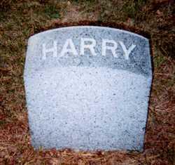 Harry Lake