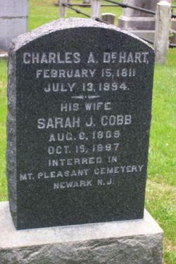 Sarah J. <i>Cobb</i> DeHart