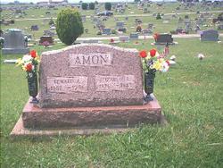 Elizabeth Louisa <i>Johnson</i> Amon