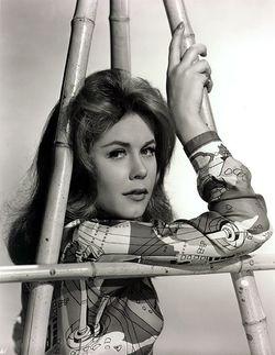 Elizabeth Victoria Montgomery