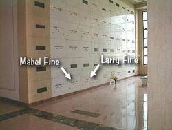 Larry Fine