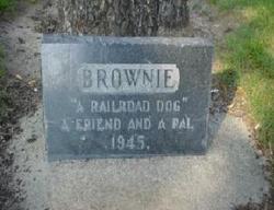 The Railroaders' Dog Brownie