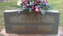 Audrey E Arnett