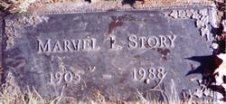 Marvel C. <i>Arntz</i> Story