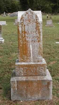 Callie Adams