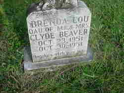 Brenda Lou Beaver