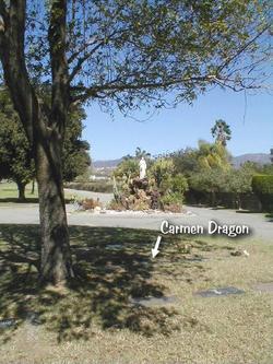 Carmen Dragon