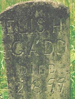 Elish Gadd