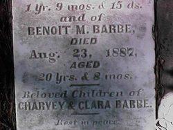 Benoit M Barbe