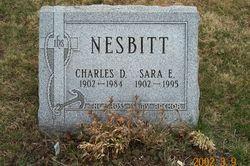 Sara Elizabeth <i>Bauer/BAUR</i> Nesbitt