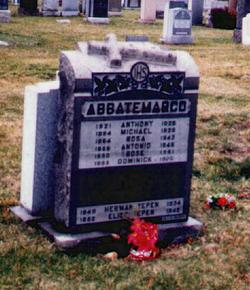 Michael Abbatemarco