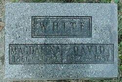 David Edward White