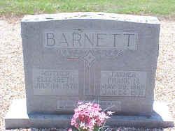 Frank M. Barnett