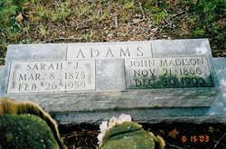 Sarah Jane <i>Anders</i> Adams