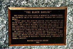 Elizabeth Black Dahlia Short