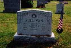Mary Anne Sullivan