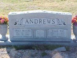Tracy Montro Andrews