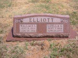 Wallace Lewis Elliott