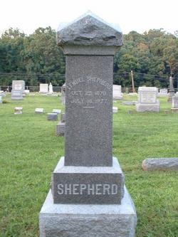 Peter Aller Shepherd