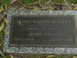 James Wilson Beasley