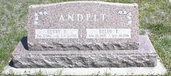 Henry F. Andelt