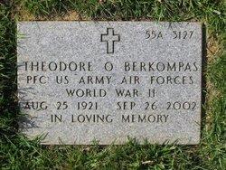 Theodore O. Berkompas