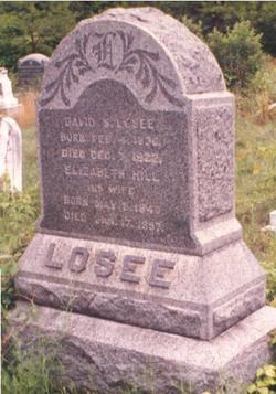 David S. Losee