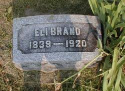 Eli D Brand
