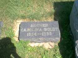 Carolina Ann <i>Abraham</i> Boldt