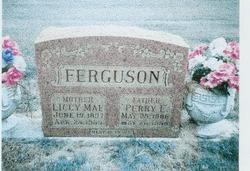 Perry Everett Ferguson