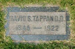 Rev David Stanton Tappan