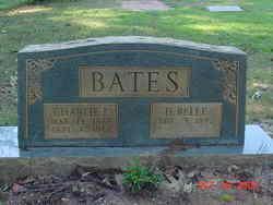 Hattie Bell <i>Pritchett</i> Bates