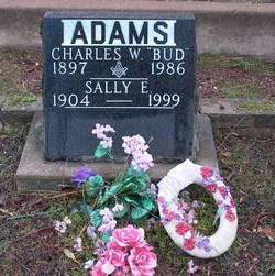 Sally E Adams