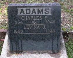 Levina J <i>Walker</i> Adams