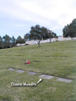 Cheerio Meredith