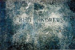 Bud Andrews