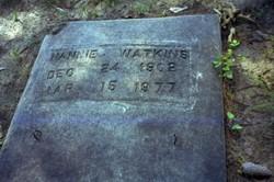 Nannie <i>Lane</i> Watkins