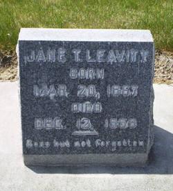 Jane Telford <i>Stoddard</i> Leavitt
