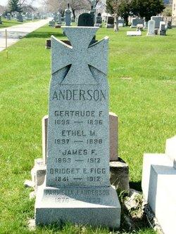 Gertrude F. Anderson