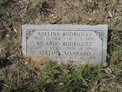 Adelina Alvarado
