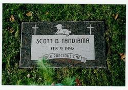 Scott Donnelly Tandiama